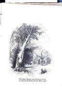 Halaman 17