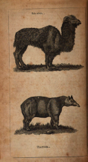 Halaman 332