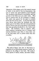 Halaman 342