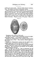 Halaman 597