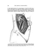 Halaman 448