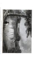 Halaman 1142
