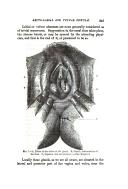 Halaman 243