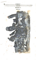 Halaman 80