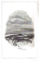 Halaman 516