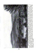 Halaman 493