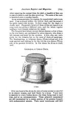 Halaman 336