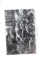 Halaman 122
