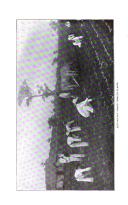 Halaman 522