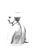 Halaman 651