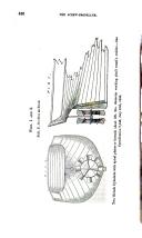 Halaman 436