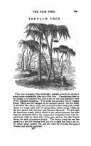 Halaman 269