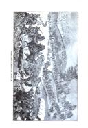 Halaman 224