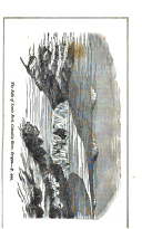 Halaman 443