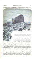 Halaman 533