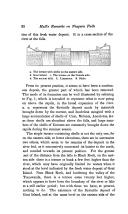 Halaman 22