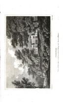 Halaman 202